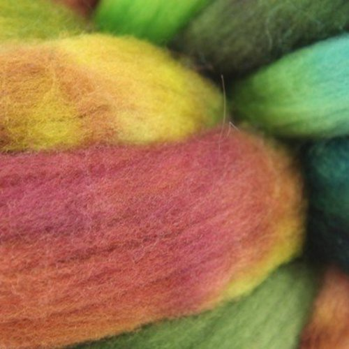 Abstract Fiber Targhee -  ()