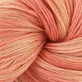 Artyarns Merino Cloud - Tonal Peach (152)