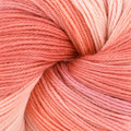Artyarns Merino Cloud - Peach, Coral (703)