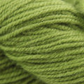 Berroco Ultra Alpaca Light Discontinued Colors - Green Bean (42103)