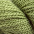 Blue Sky Fibers Baby Alpaca Sport Discontinued Colors - Celery (543)