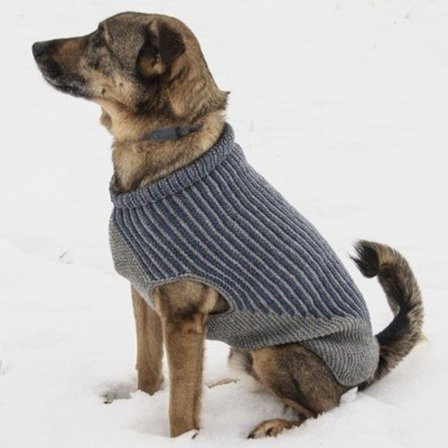 Blue Sky Fibers Bird Island Dog Sweater PDF -  ()