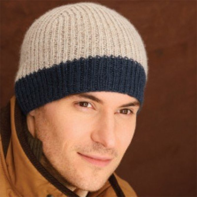 Blue Sky Fibers Icehouse Hat Free At Webs Yarn