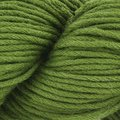 Blue Sky Fibers Organic Cotton Skinny Dyed Discontinued Colors - basil (313)