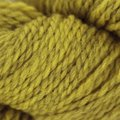 Blue Sky Fibers Woolstok 50 - Golden Meadow (1308)