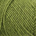 Brown Sheep Lamb's Pride Worsted - Kiwi (M-191)