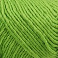 Brown Sheep Lamb's Pride Worsted - Limeade (M-120)