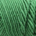 Brown Sheep Lamb's Pride Worsted - Woodland Green (M169)