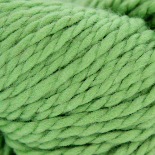 Cascade Yarns 128 Superwash Discontinued Colors - Peppermint (0234)