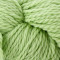Cascade Yarns 128 Superwash Discontinued Colors - Lime Sherbet (0850)
