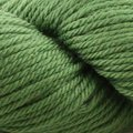 Cascade Yarns 220 Superwash Aran - Cactus (1995)