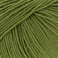Cascade Yarns 220 Superwash Discontinued Colors - Misty Olive (0891)