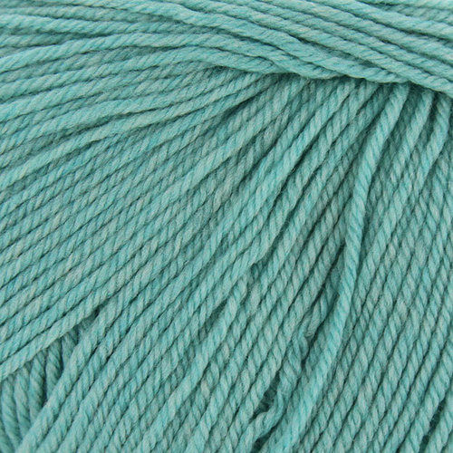 Cascade Yarns 220 Superwash Discontinued Colors - Seafoam Heather Misdye (1973A)