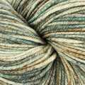 Cascade Yarns 220 Superwash Effects Discontinued Colors - Southwest (17)