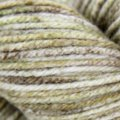 Cascade Yarns 220 Superwash Effects - Woodland (05)