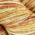 Cascade Yarns 220 Superwash Effects - Autumn (09)