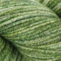 Cascade Yarns 220 Superwash Effects - Forest (14)