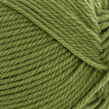 Cascade Yarns 220 Superwash Merino - Iguana (058)