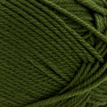 Cascade Yarns 220 Superwash Merino - Chive (059)