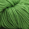 Cascade Yarns 220 Superwash Sport - Green Apple (802)