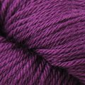 Cascade Yarns 220 Superwash Sport - Plum Crazy (882)