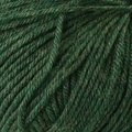 Cascade Yarns 220 Superwash - Shire (1918)