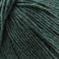 Cascade Yarns 220 Superwash - Spring Night (1974)
