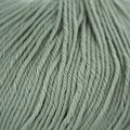 Cascade Yarns 220 Superwash - Laurel Green (250)