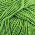 Cascade Yarns 220 Superwash - green apple (802)