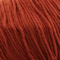 Cascade Yarns 220 Superwash - Ginger (858)