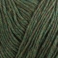 Cascade Yarns 220 Superwash - lichen (867)