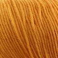 Cascade Yarns 220 Superwash - Golden (877)