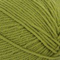 Cascade Yarns Anchor Bay - Moss (013)