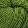 Cascade Yarns Avalon - Turtle Green (36)