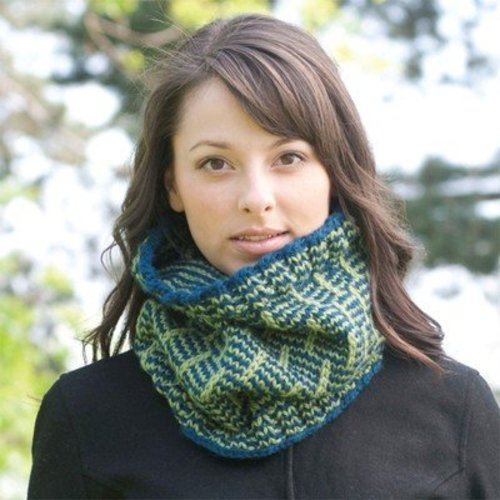 Cascade Yarns C217 Post & Rail Cowl (Free) -  ()