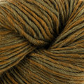 Cascade Yarns Color Duo - Mossy Glade (211)