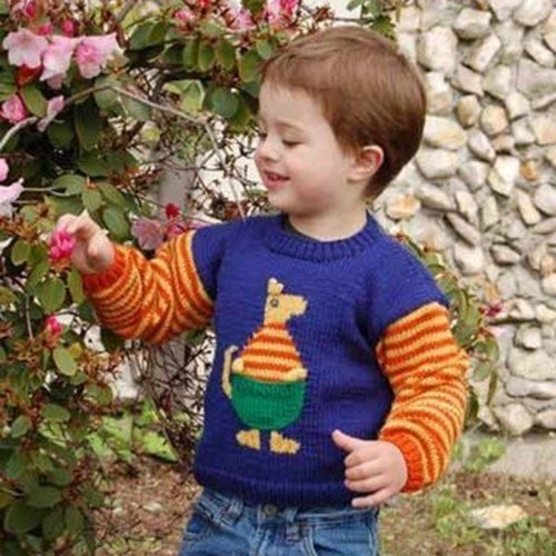 Cascade Yarns CYPW185 Children's Kangaroo Sweater (Free) -  ()