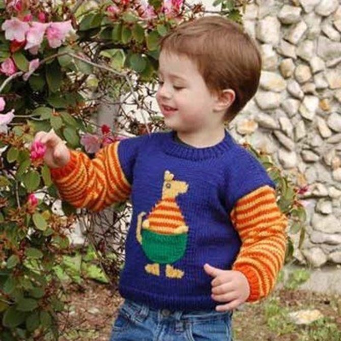 Cascade Yarns Cypw185 Childrens Kangaroo Sweater Free At Webs