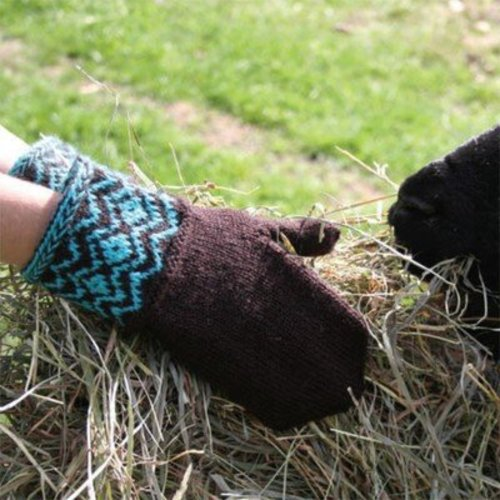 Cascade Yarns DK219 Chocolate with Icing Mittens (Free) -  ()