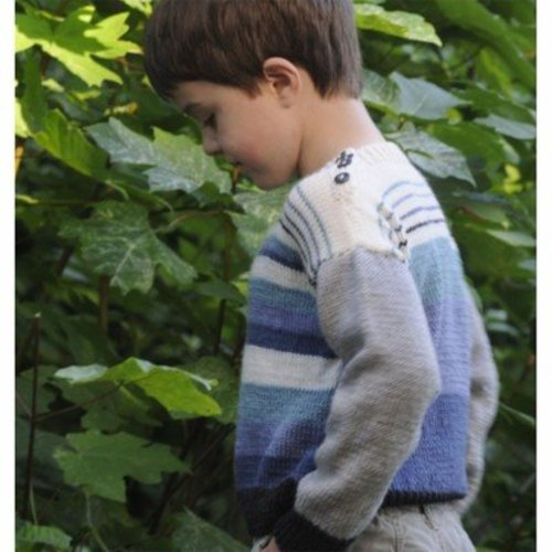 Cascade Yarns DK226 David's Sweater (Free) -  ()