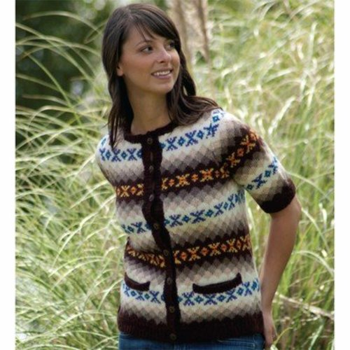 Cascade Yarns DK255 Women's Retro Fair Isle Cardigan (Free) -  ()