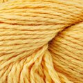 Cascade Yarns Eco + Discontinued Colors - Yellow (8457)