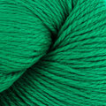 Cascade Yarns Eco + Discontinued Colors - Christmas Green (8894)