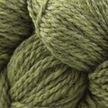Cascade Yarns Eco+ - Turtle (2452)