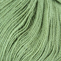 Cascade Yarns Forest Hills Discontinued Colors - Mosstone (07)