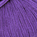Cascade Yarns Forest Hills Discontinued Colors - Royal Purple (16)