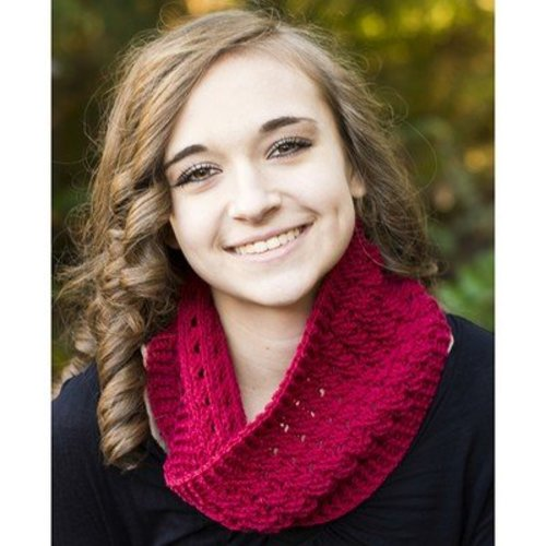 Cascade Yarns FW202 Crocheted Cable Cowl (Free) -  ()