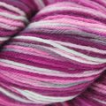 Cascade Yarns Heritage Paints - Tea Rose (9901)