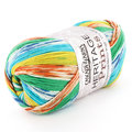 Cascade Yarns Heritage Prints Discontinued Colors - Fiesta (055)