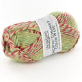 Cascade Yarns Pacific Chunky Color Wave - Spring (406)